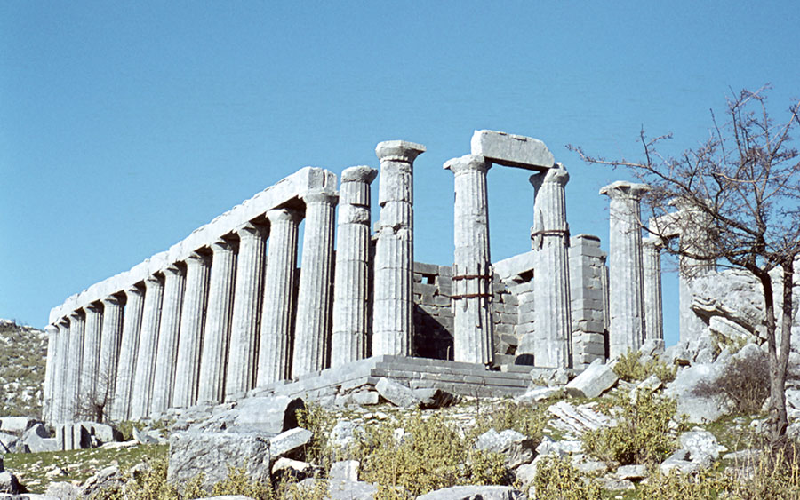 Olympia Tours - Temple of Apollo Epicurius